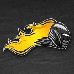 Logo Vienna Knights