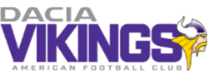 Vienna Vikings Logo