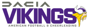 Vienna Vikings Logo